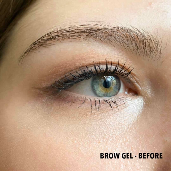 Brow Gel Before